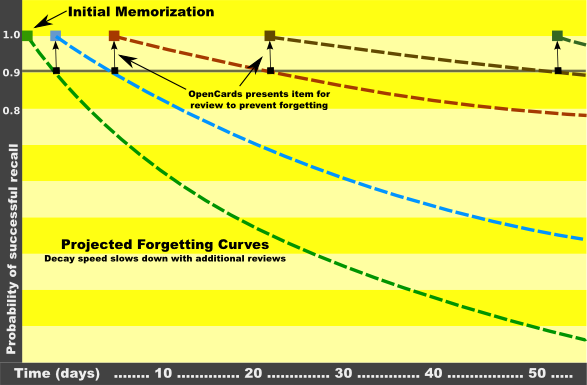 The forgetting-curve